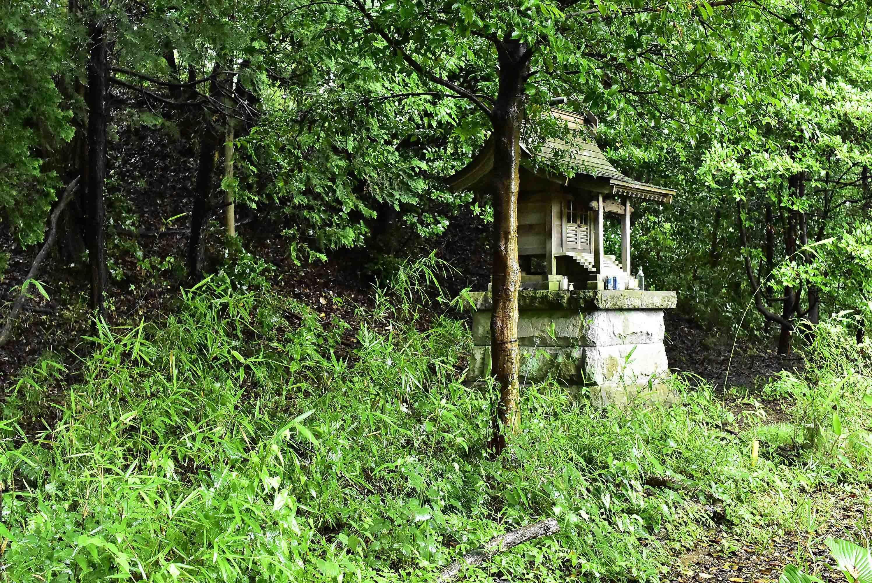 小松城 祠の在る郭2