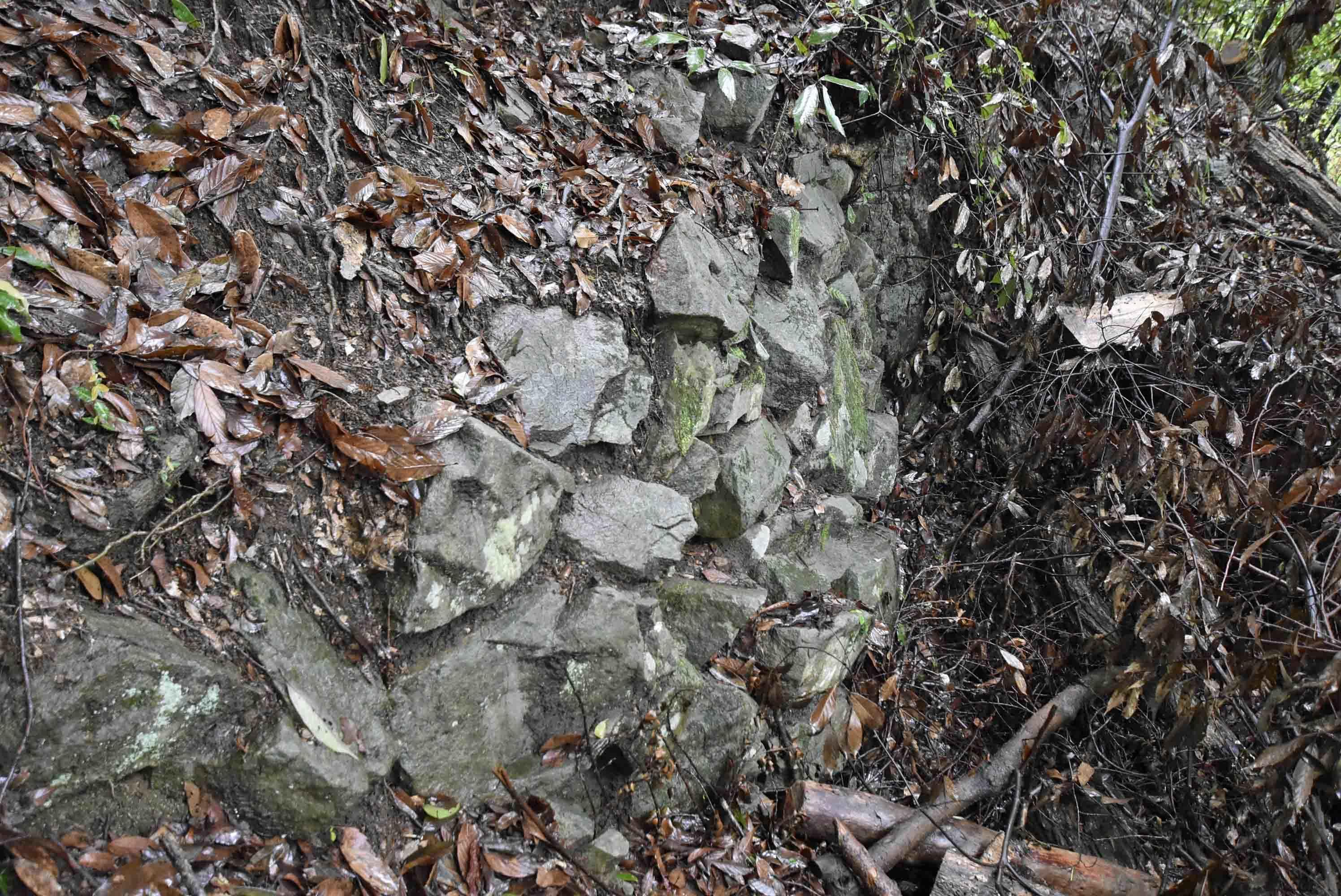 家老屋敷の石積
