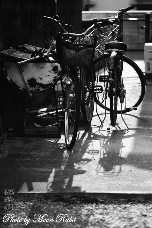 自転車 愛媛県西条市西新町
