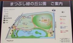 matubushi190616-201.jpg