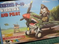 P40-10