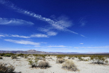 blog 5 Twentynine Palms, Joshua Tree NP, Turkey Flats, Pinto Basin, Pinto Mountain_DSC7716-3.20.18.(2).jpg