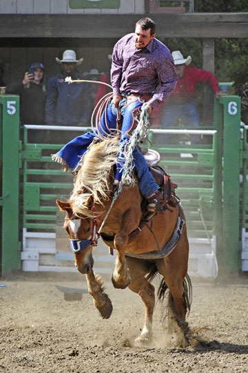 blog (4x6@300) Yoko 44 Rowell Ranch Rodeo, Ranch Bronc 2, Dyllan Pierce (RR) 2_DSC9519-5.19.18.(2).jpg