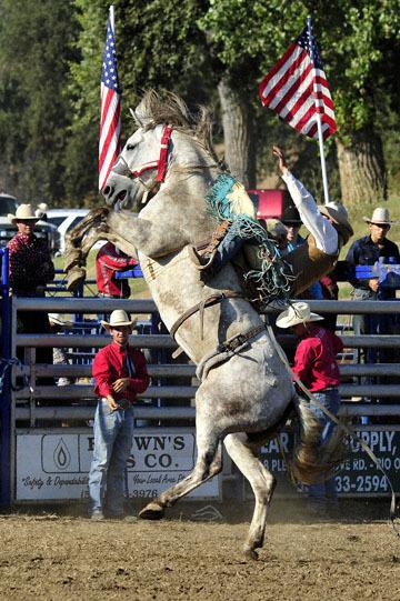 blog (4x6@300) Yoko 94 Marysville Stampede, Saddle Bronco 5, Quincy Crum (RR McArthur, CA)_DSC2902-9.17.17.(1).jpg