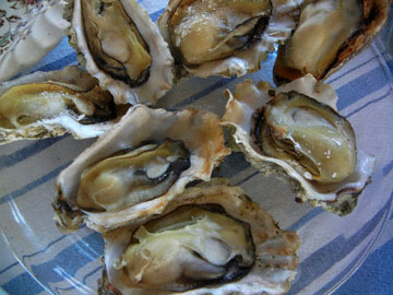 blog 034 Broiled Oysters to share_DSCN3011-5.22.19.jpg
