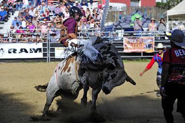 blog (6x4@300) Yoko 42 Gold Country Rodeo, Bull Riding 1, Brooks Bonde (NS