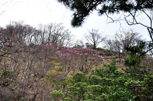 4篠山190422
