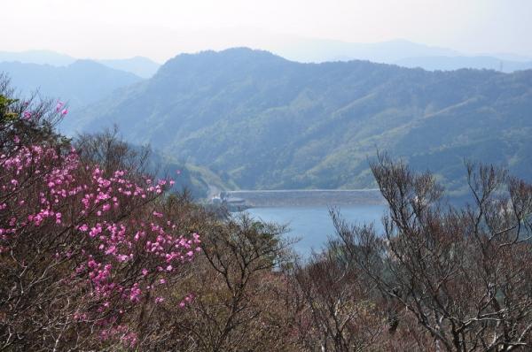 4稲叢山190502