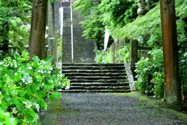 5惣河内神社190615