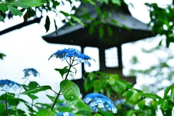 6惣河内神社190615