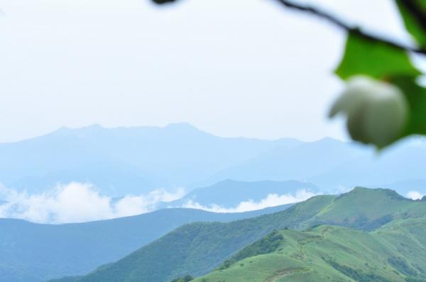 11中津明神山190713