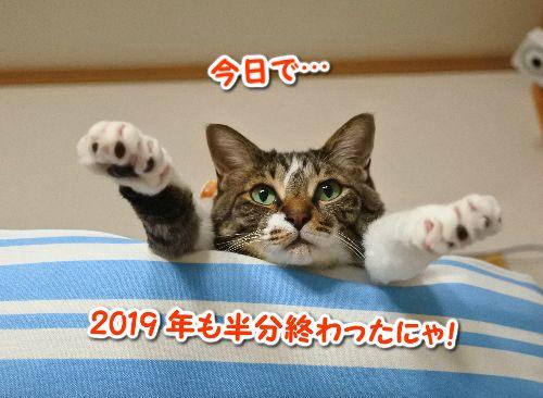 2019060707.jpg