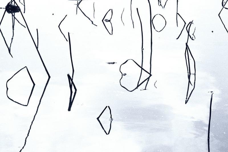 AEMX20190622_0113(修整1)